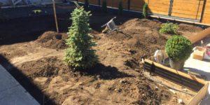 Подготовка к укладке газона