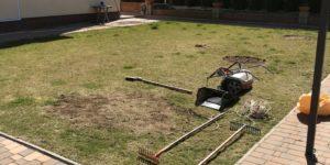 Реставрация газона